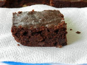 Turtle Sourdough Brownies Napkin