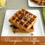 Pumpkin Waffles & happy birthday julie