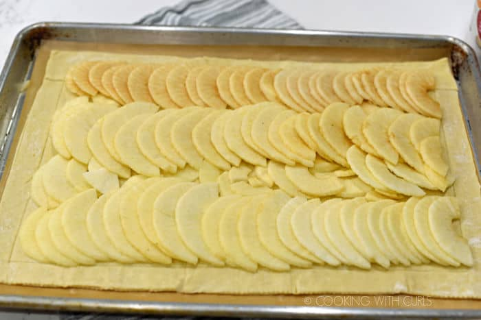 apple slices laid out in rows on top of the puff pastry on a baking sheet.