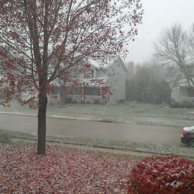 Snow November 11 2013