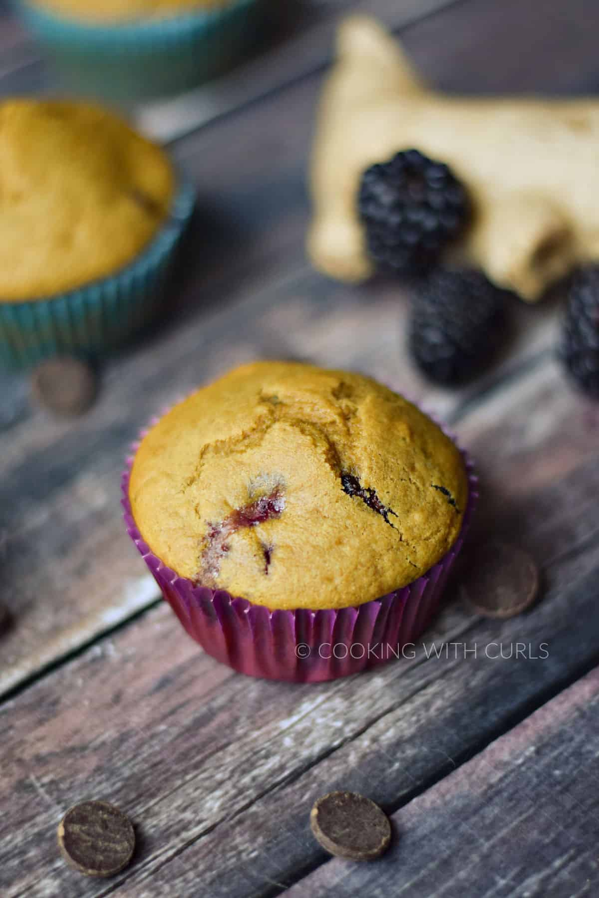 Two blackberry muffins surrounded by fresh blackberries and dark chocolate chips.
