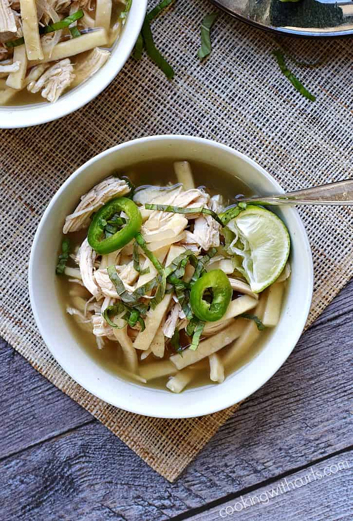 This Chinese Chicken Noodle Soup is guaranteed to warm you up this winter | cookingwithcurls.com