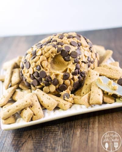 peanut-butter-cheese-ball-2