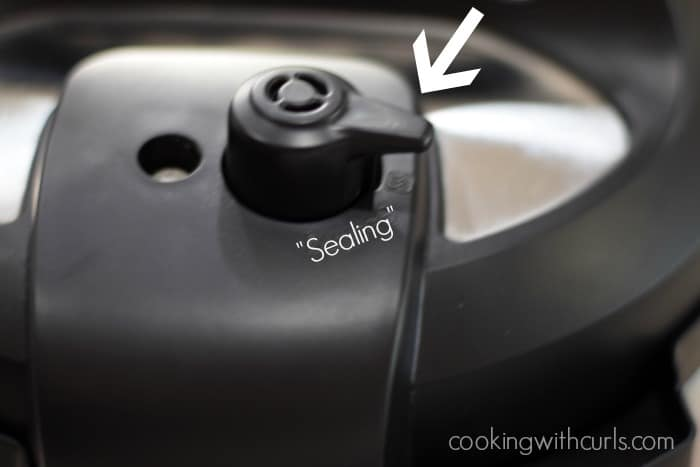 Instant Pot sealing cookingwithcurls.com