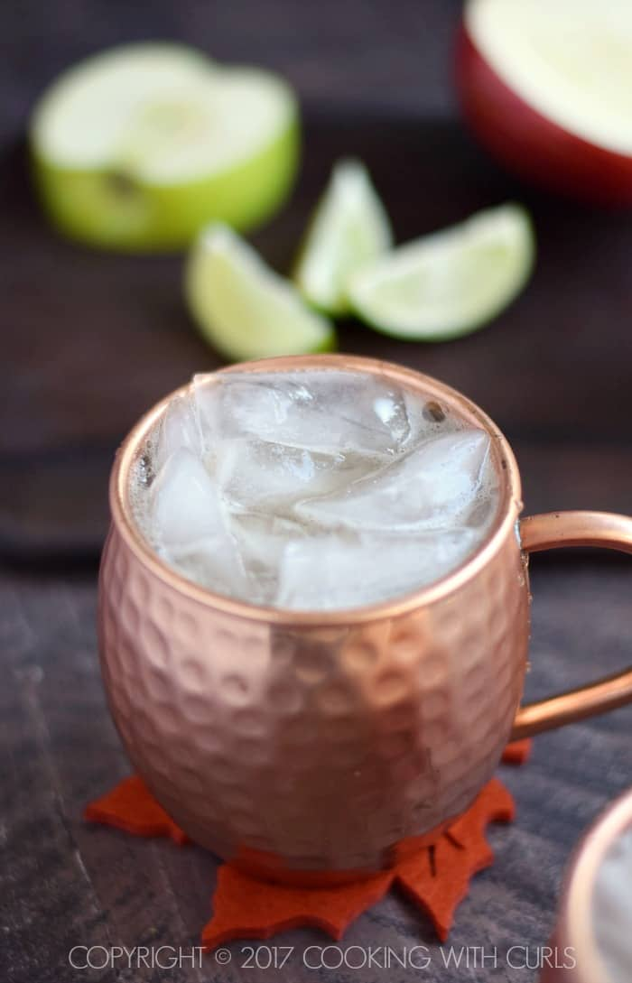 Apple Cider Mule ice | COPYRIGHT © 2017 COOKING WITH CURLS