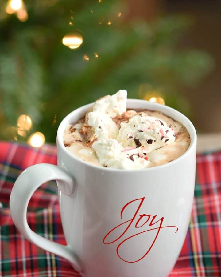 Warm up this holiday season with a mug of Boozy Peppermint Hot Chocolate © 2017 COOKING WITH CURLS