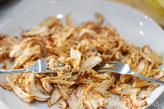 Instant Pot Mexican Casserole shredded chicken on a plate with two forks.