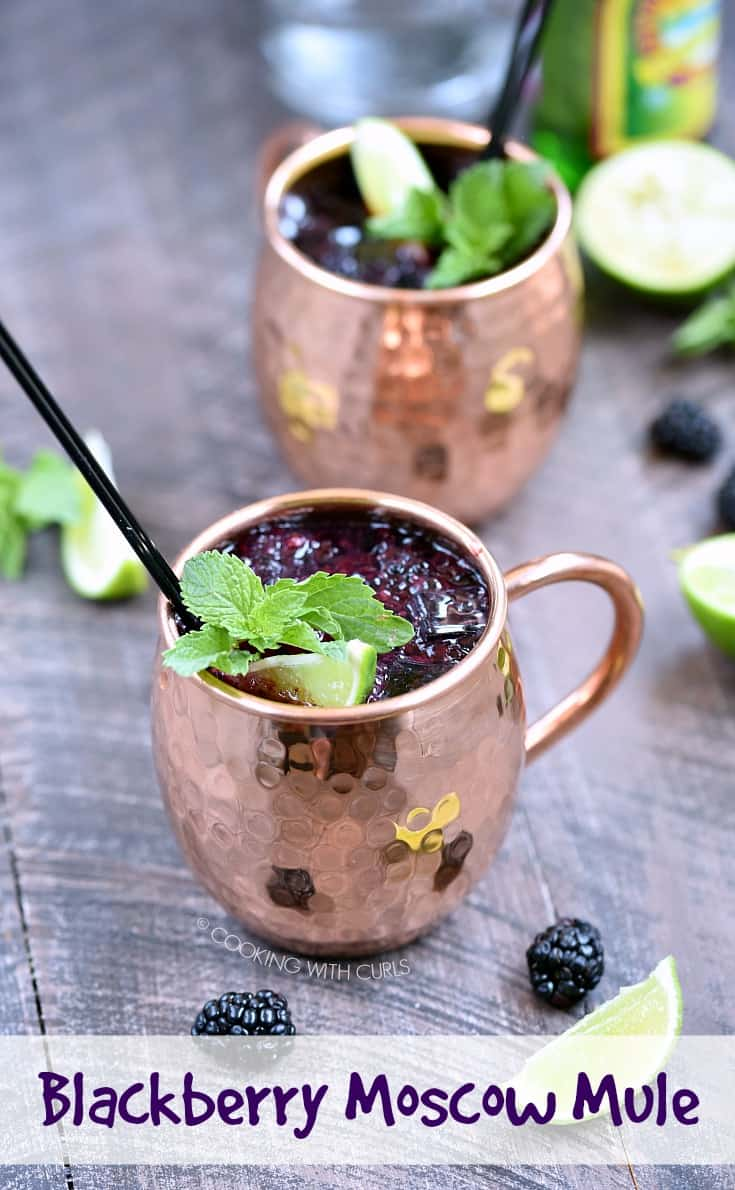 Grab those summer berries while you can and make yourself a refreshing Blackberry Moscow Mule before they are all gone, it is the perfect way to cool down in the summer heat! #cocktail #blackberries #moscowmule