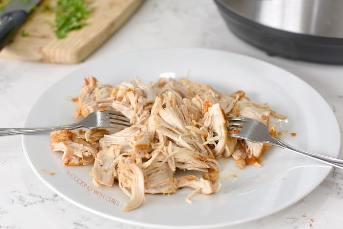 Salsa Chicken shredded with two forks on a large white plate.