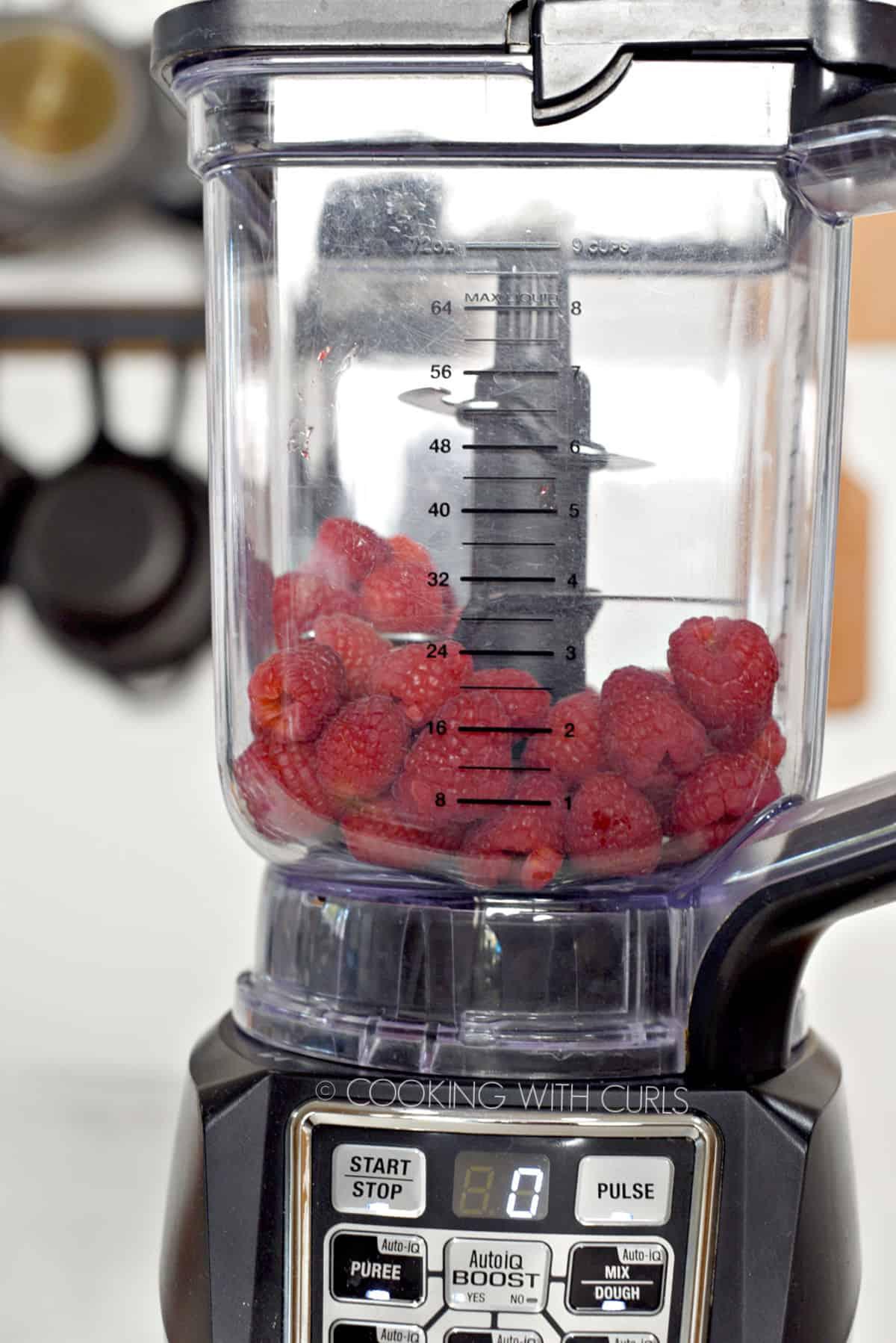 Fresh raspberries in a blender.