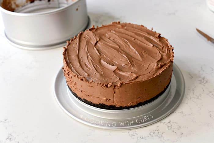 Chocolate Cheesecake in the springform pan with the ring removed.