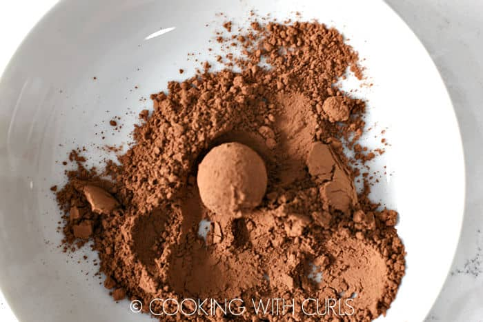Red Wine Chocolate Truffle rolled in cocoa in a white bowl.
