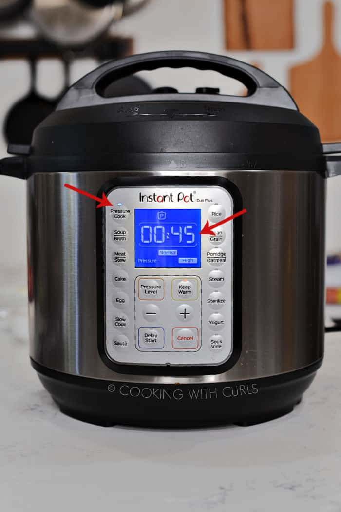 Instant Pot Pressure Cook 45 minutes Normal High Pressure.