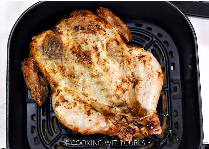 Half cooked whole chicken flipped over in the air fryer basket.