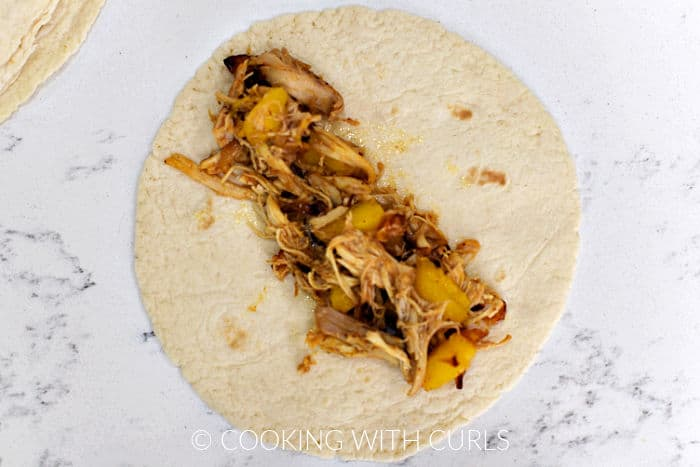Peach and chicken filling down the center of a flour tortilla.