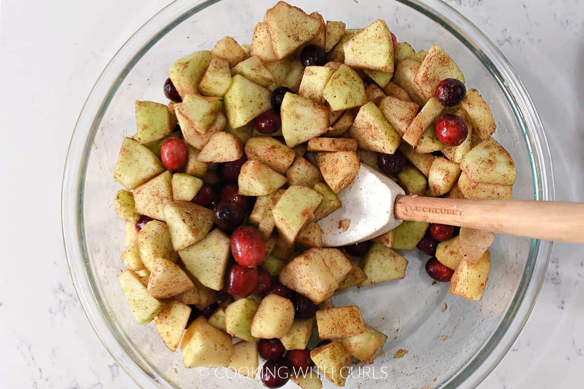 Apple chunks tossed with cranberries, cinnamon, nutmeg, salt, and sugar in a bowl.