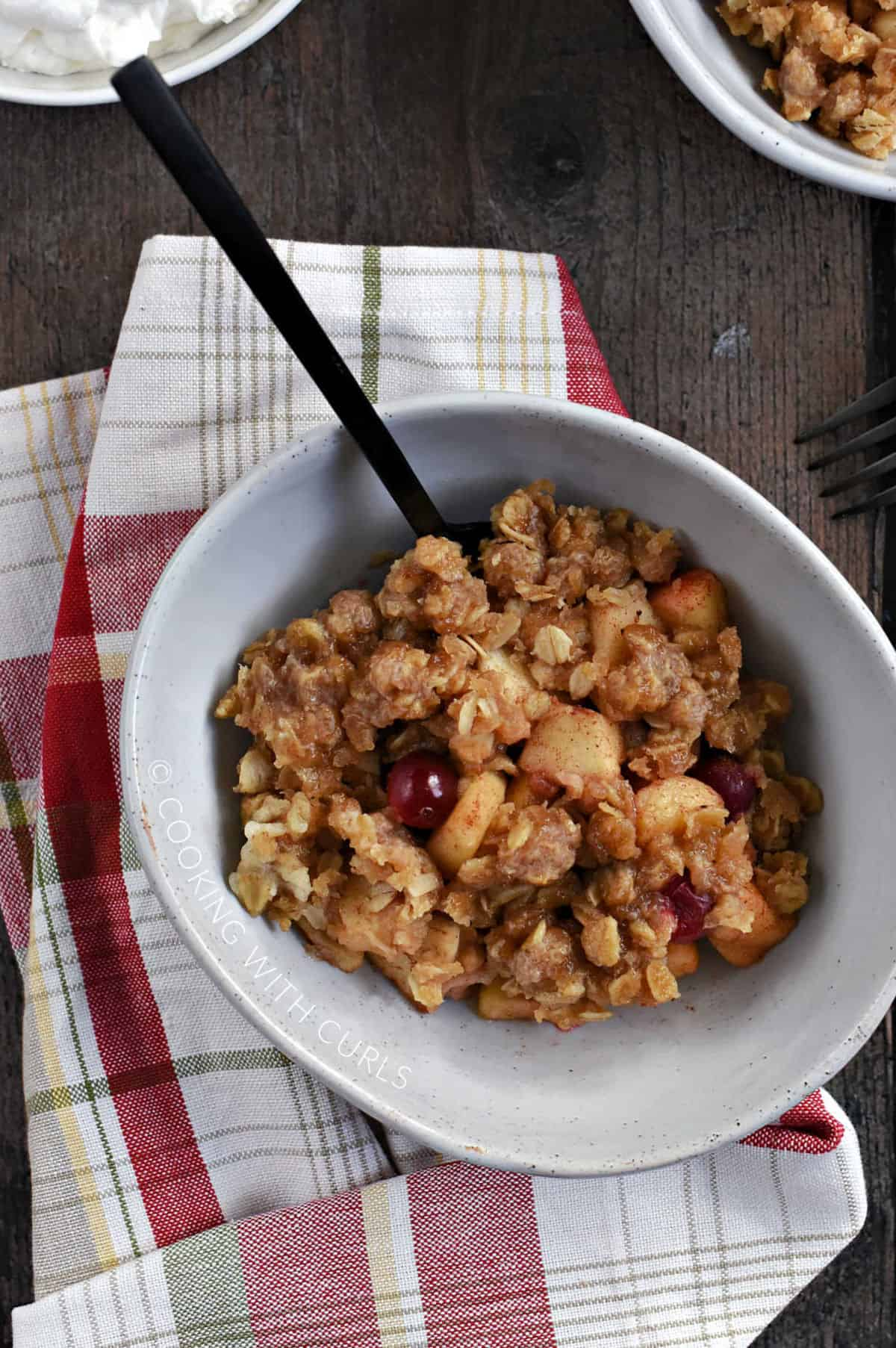 Looking down on a bowl of apple chunks, oats, and cranberries with a bowl of whipped cream in the upper left corner.