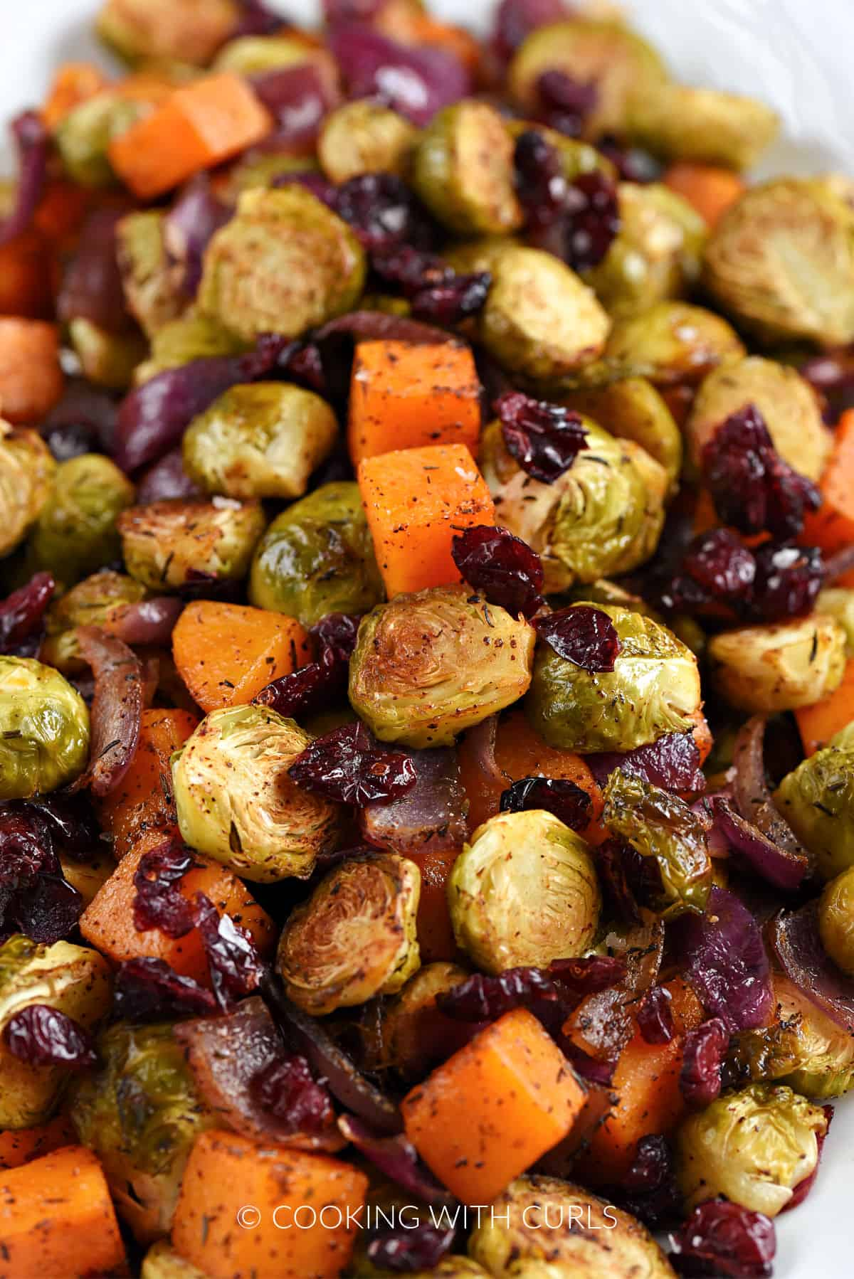 Very close-up image of Oven Roasted Brussels Sprouts and Squash with Dried Cranberries.